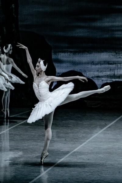 '백조의 호수' 공연사진. 사진=국립발레단 제공