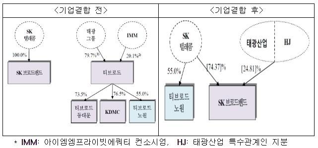 SK브로드밴드-티브로드 기업결합 건 [자료=공정거래위원회]