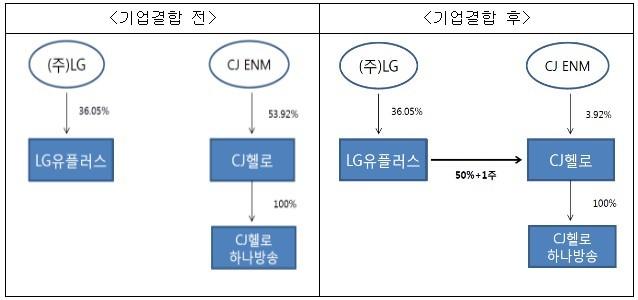LG유플러스-CJ헬로 기업결합 건 [자료=공정거래위원회]