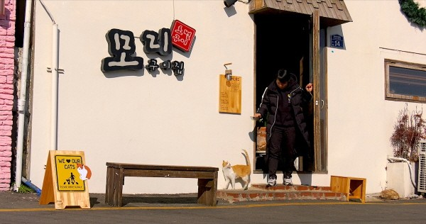 '고양이 집사' 스틸사진. 사진=서울독립영화제 제공