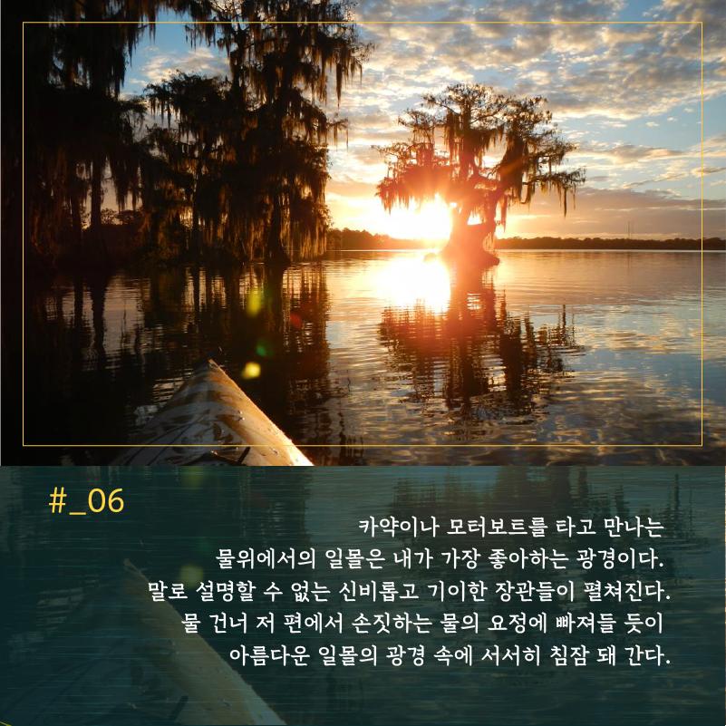 [Jay의 정글탐험] 정글, 석양에 물들다