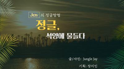 [Jay의 정글탐험] 석양에 물드는 플로리다 정글