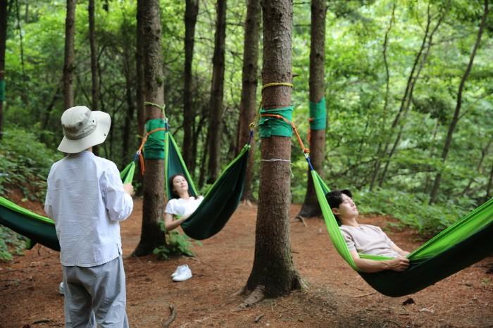 숲에 안기다(제공:산림청)