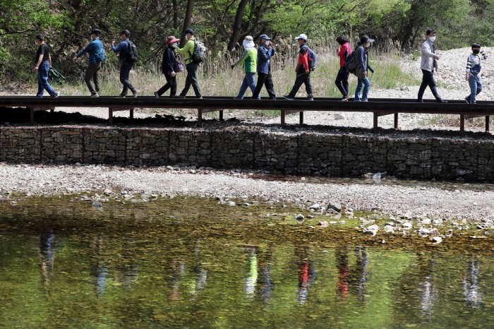 대전시 계룡산 국립공원 수통골을 찾은 등산객들이 산행을 하고 있다(제공:News1)