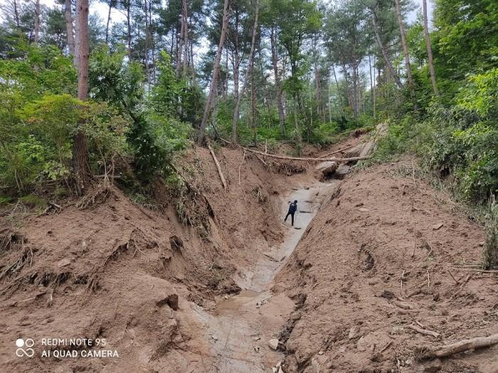 지난 7월17일 거창 산사태 지역에서 한국지질자원연구원 산사태 연구팀이 현장조사를 실시하고 있다(제공:한국지질자원연구원)