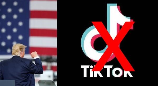 도널드 트럼프 대통령이 틱톡 사용 금지 발언을 했다 사진 = 뉴스1