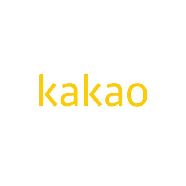카카오, 2020년 2분기 잠정실적 공개…매출 9529억원, 영업익 978억 달성