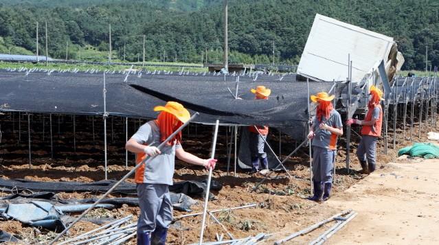 한국타이어, 금산지역 수해복구 봉사활동 진행