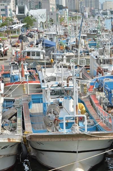 상호금융예금자보호기금에 목표기금제가 도입되어 어업인들의 보험료 부담이 낮아진다 사진 = 뉴스1