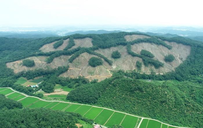 부여국유림(제공:산림청)
