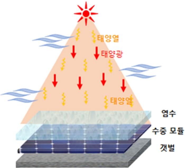 염전태양광발전 모듈