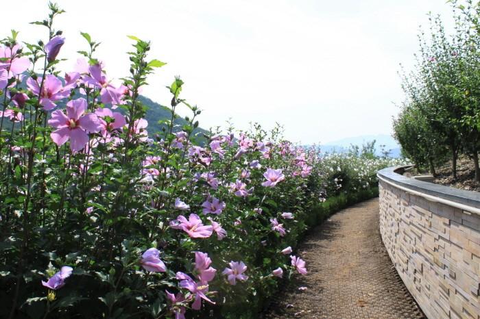 최우수상(강원도 홍천), 무궁화수목원(제공:산림청)