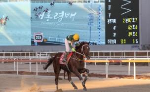한국경마의 살아있는 전설, 트리플나인 ··· 경주로 떠난다