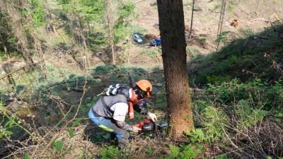안전한 산림 작업환경 조성 위한 자료집 발간