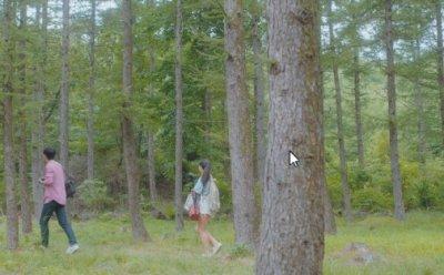 [ET-ENT 영화] 춘천영화제(2) '그녀를 지우는 시간' 편집자의 시야로 보는 영화! 새로운 시야에 대한 경험!