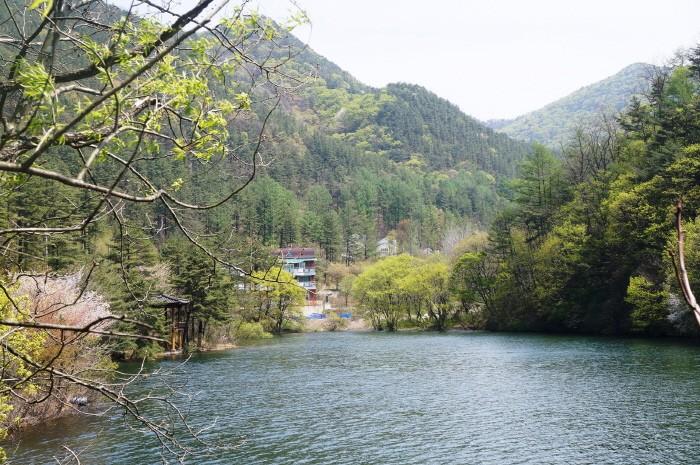 속리산 말티재 명품숲 자연휴양림(제공:산림청)