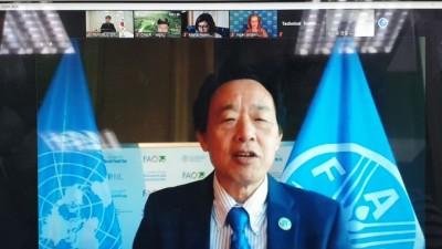 유엔식량농업기구 발표, 한국 산림경영 성과 1위