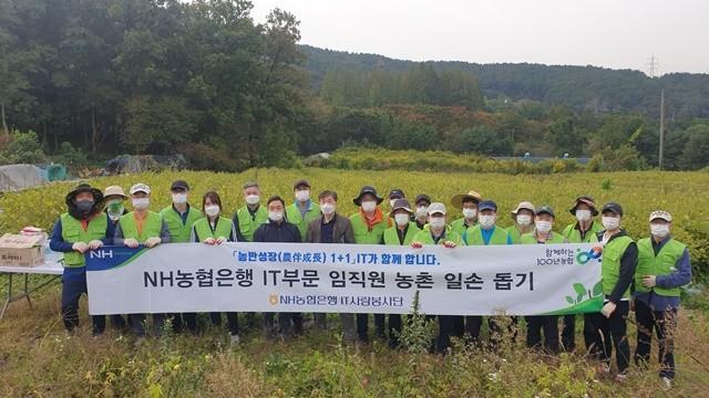 NH농협은행 IT부문 박상국부행장(사진왼쪽 9번째)과 직원들이 농촌일손돕기를 실시하며 단체사진을 찍고 있다. 사진 = NH농협은행