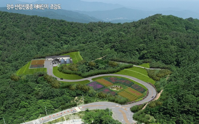 장수 산림신품종 재배단지 조감도(제공:국립산림품종관리센터)