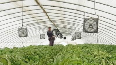 정부, 베트남 수출 한국형 스마트팜에 '버팔로 컨소시엄' 선정