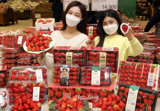 17일 오전 이마트 성수점에서 모델들이 '딸기 챔피언' 행사를 소개하고 있다.