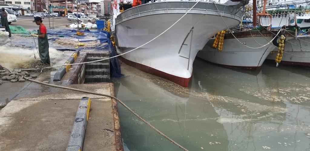 해양오염 단속 현장(사진=해경)