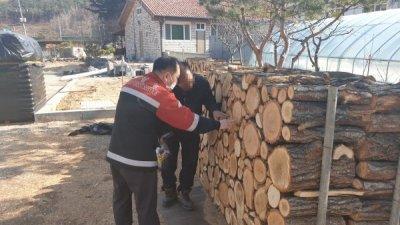 동부지방산림청, 봄철 소나무류 이동 특별단속 실시