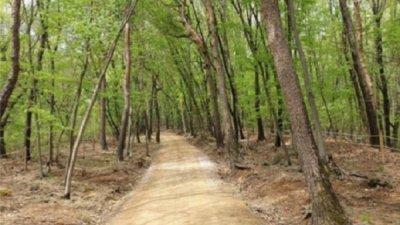 조선왕릉 숲길 11개소, 봄철 맞아 개방
