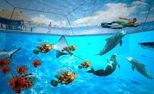 바다를 옮겨온 듯…친환경 가상 수영장