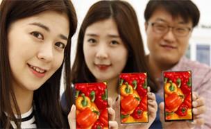 LGD, 신용카드 보다 좁은 `0.7mm` 베젤 개발