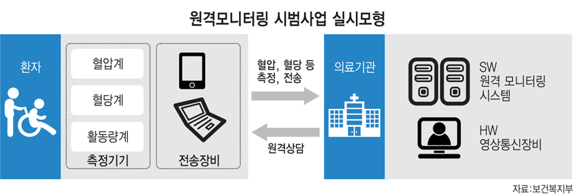원격모니터링 시범사업 실시모형