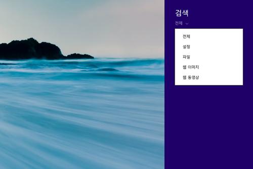 ▲ 화면 오른쪽으로 나타나는 검색 창. 전체 설정 파일 웹 이미지 웹 동영상 등 세부적인 설정이 가능하다.