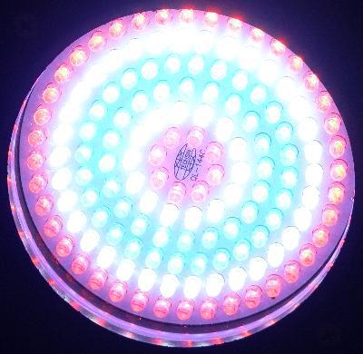 LED조명 `5만 시간의 함정` - 전자신문