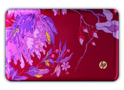 HP 파빌리온 스페셜 에디션 노트북 대거 출시