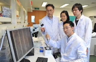 박제균 KAIST 교수(뒷줄 왼쪽)와 연구원들이 실험실에서 연구에 몰두하고 있다.