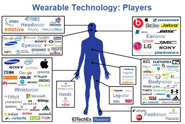 웨어러블 기술 관련 회사와 관련기술개발 분야. 사진=IDTechEx리서치
