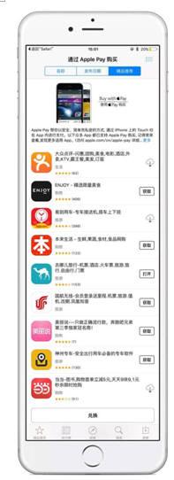 오프라인 결제에 강점이 있던 애플페이는 온라인 지불결제 확대를 위해 대중평점과 VIP닷컴, 이다오택시, 차이나항공 등 온라인 결제 서비스 사업자를 대거 끌어들였다. 앱 스토어에 등록된 애플페이 결제가 허용된 앱 사업자들.