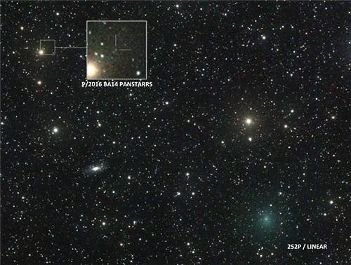 팬스타스 혜성(왼쪽)