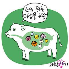 [KISTI 과학향기]풀만먹는 소가 지구 온난화 `주범`