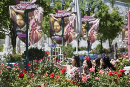 에버랜드는 5월 9일부터 15일까지 장미축제 오픈을 기념해 기가레인 블루투스 기반 비콘을 활용해 `셰익스피어 로즈가든 스탬프 투어` 이벤트를 진행했다. 앞으로 비콘을 활용한 다양한 서비스를 실시한다는 계획이다.