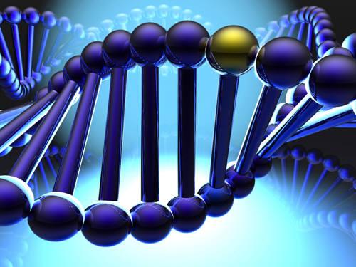 유전자 그래픽