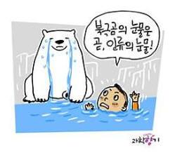 [KISTI 과학향기]북극곰의 눈물은 수십 년 뒤 인류의 눈물?