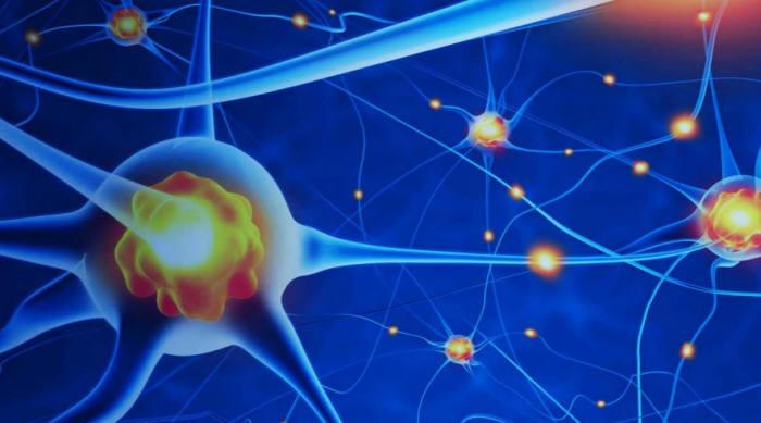 네패스, 사람 뇌 닮은 칩 사업 첫발…美GV와 독점 기술계약