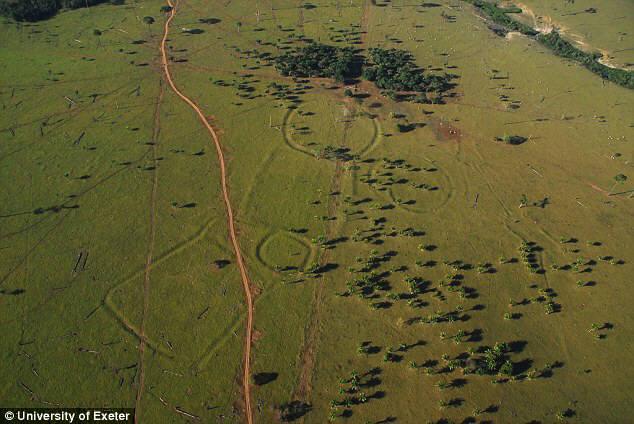 아마존 정글서 정체불명 지형물 발견