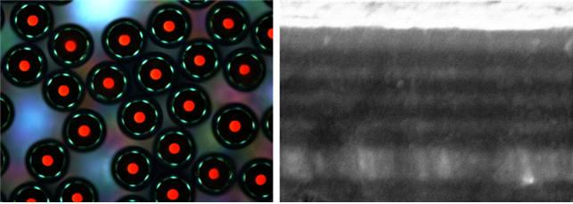새로 개발한 미세 광결정의 광학 현미경 사진(좌), 입자표면에 형성된 적층구조(우)