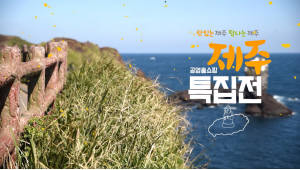 {htmlspecialchars(공영홈쇼핑, 제주산 농수산물 5시간 연속 특집방송)}
