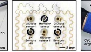 `땀으로 혈당을 측정한다` 피부부착 신형 당뇨패치 개발