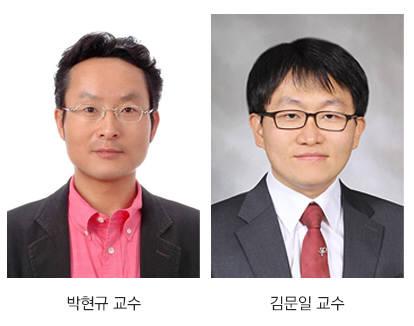 박현규 KAIST 생명화학공학과 교수, 김문일 가천대 바이오나노학과 교수