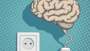 새로운 환경에서 잠들 때 인간 뇌 한쪽은 깨어 있다