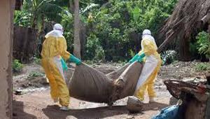 에볼라 공포 재발..민주콩고서 4번째 사망자 발생